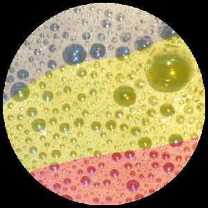 Detergents i Desinfectants
