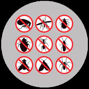 Insectocutors